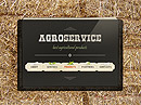 Agro Service Easy flash template