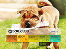 Dog Training - HTML5 templates, Animals & Pets flash templates